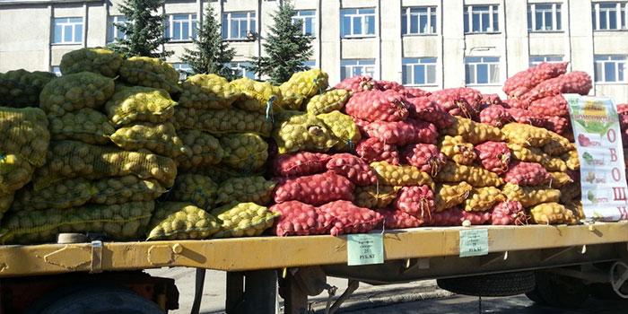 ярмарка в южно-сахалинске картошка