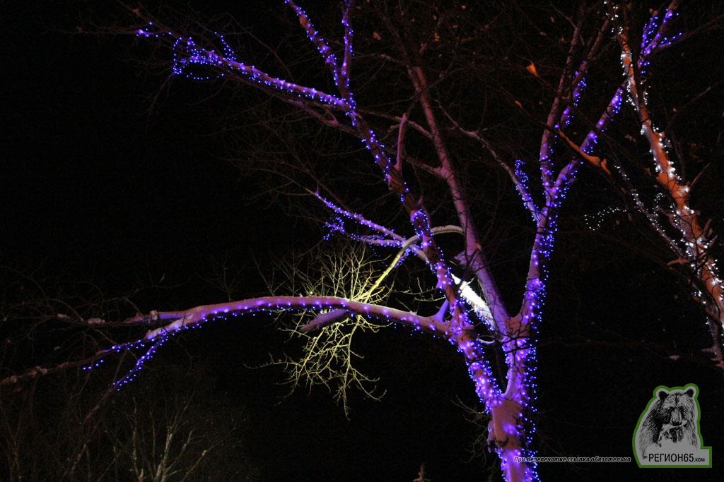 Южно-Сахалинск зима снег ночь