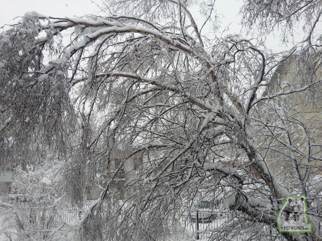 сахалин метель снег