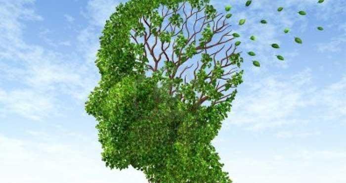 Предупреждение болезни Альцгеймера