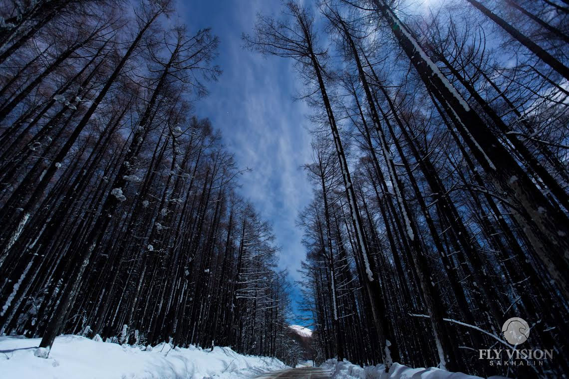 Дорога на Горный воздух