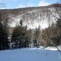 Лыжня Оldschool